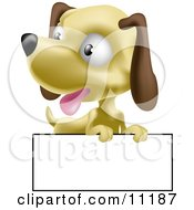 Cute Little Hound Dog Puppy With A Blank Sign Clipart Illustration