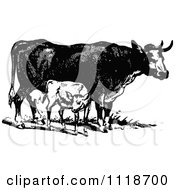 Clipart Of A Retro Vintage Black And White Cow And Calf Royalty Free Vector Illustration by Prawny Vintage