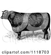 Clipart Of A Retro Vintage Black And White Bull 1 Royalty Free Vector Illustration by Prawny Vintage