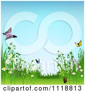 Clipart Of A Background Of Wild Meadow Flowers And Butterflies Royalty Free Vector Illustration by dero