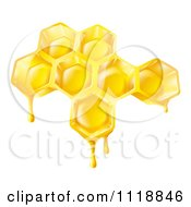 Clipart Of Bee Honey Dripping Off Of Combs Royalty Free Vector Illustration