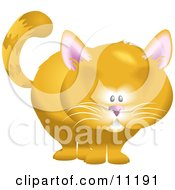 Cute Orange Cat Clipart Illustration