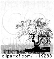 Clipart Of A Distressed Bare Tree Background Royalty Free Vector Illustration