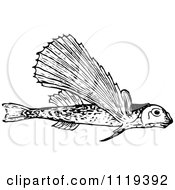Clipart Of A Retro Vintage Black And White Flying Fish Royalty Free Vector Illustration by Prawny Vintage