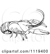 Clipart Of A Retro Vintage Black And White Crayfish Royalty Free Vector Illustration