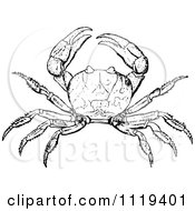 Clipart Of A Retro Vintage Black And White Crab Royalty Free Vector Illustration