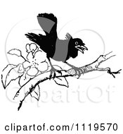 Clipart Of A Retro Vintage Black And White Black Bird Perched On A Blossoming Branch Royalty Free Vector Illustration