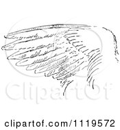 Clipart Of A Retro Vintage Black And White Bird Wing Royalty Free Vector Illustration