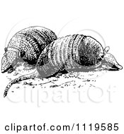 Clipart Of Retro Vintage Black And White Armadillos Royalty Free Vector Illustration
