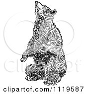 Clipart Of A Retro Vintage Black And White Bear Balancing On Its Hind Legs Royalty Free Vector Illustration by Prawny Vintage #COLLC1119587-0178