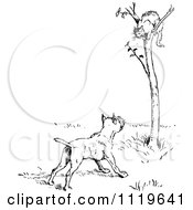Clipart Of A Retro Vintage Black And White Dog Barking At A Cat In A Tree Royalty Free Vector Illustration