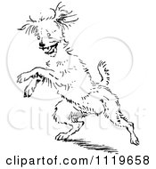 Clipart Of A Retro Vintage Black And White Jumping Dog Royalty Free Vector Illustration