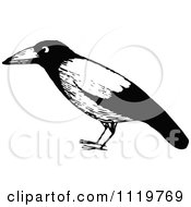 Retro Vintage Black And White Black Bird