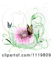 Clipart Of Butterflies With A Pink Flower And Grunge Royalty Free Vector Illustration