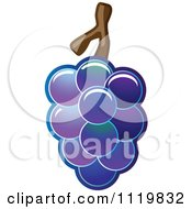 Cartoon Of A Bunch Of Shiny Purple Grapes Royalty Free Vector Clipart by Leo Blanchette