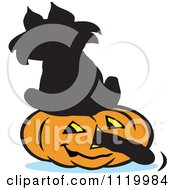 Cartoon Of A Black Cat Sitting On A Halloween Jackolantern With Its Tail Going Through The Nose Royalty Free Vector Clipart