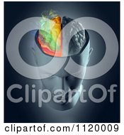 Clipart Of A 3d Colorful Smoking Human Brain 3 Royalty Free CGI Illustration