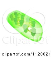 Clipart Of A 3d Green Plant Chloroplast Royalty Free CGI Illustration