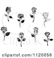 Clipart Of Black And White Rose Flowers Royalty Free Vector Illustration by Vector Tradition SM