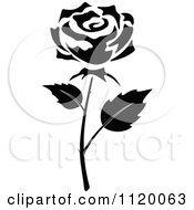 Clipart Of A Black And White Rose Flower 6 Royalty Free Vector Illustration