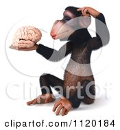 Clipart Of A 3d Thinking Chimp Holding A Brain 1 Royalty Free CGI Illustration