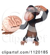 Clipart Of A 3d Thinking Chimp Holding A Brain 2 Royalty Free CGI Illustration
