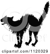 Clipart Of A Silhouetted Frightened Cat Royalty Free Vector Illustration