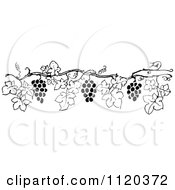Clipart Of A Retro Vintage Black And White Grape Vine Border 6 Royalty Free Vector Illustration