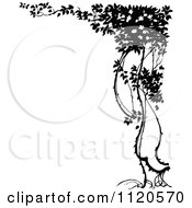 Clipart Of A Retro Vintage Black And White Tree Corner Border 1 Royalty Free Vector Illustration