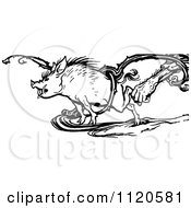 Clipart Of A Retro Vintage Black And White Hand Grabbing A Boar In A Vine Royalty Free Vector Illustration