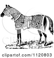 Clipart Of A Retro Vintage Black And White Horse In A Blanket Royalty Free Vector Illustration