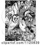 Retro Vintage Black And White Owl In A Crowd Of Birds