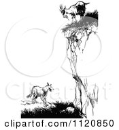 Clipart Of A Retro Vintage Black And White Goat On A Cliff Over A Fox Royalty Free Vector Illustration