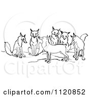 Clipart Of A Retro Vintage Black And White Tailless Fox And Group Royalty Free Vector Illustration by Prawny Vintage