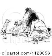 Clipart Of A Retro Vintage Black And White Fox And Lion With Prey Royalty Free Vector Illustration