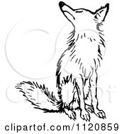 Clipart Of A Retro Vintage Black And White Fox Sitting Royalty Free Vector Illustration by Prawny Vintage