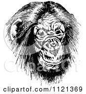 Clipart Of A Retro Vintage Black And White Chimp Face Royalty Free Vector Illustration by Prawny Vintage