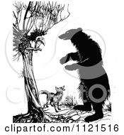 Retro Vintage Black And White Fox Vulture And A Standing Bear