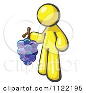 Cartoon Of A Yellow Man Vintner Wine Maker Holding Grapes Royalty Free Vector Clipart