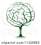 Clipart Of A Green Brain Tree Royalty Free Vector Illustration