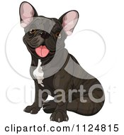 Cartoon Of A Cute Black Frenchie Bulldog Sitting Royalty Free Vector Clipart