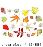 Clipart Of Fall Leaves Royalty Free Vector Illustration