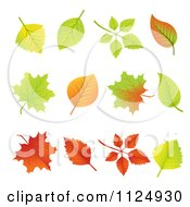 Clipart Of Colorful Autumn Leaves Royalty Free Vector Illustration by vectorace