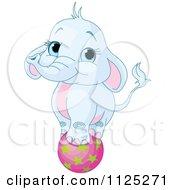 Cute Blue Elephant Balancing On A Ball