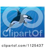 Cartoon Of A Happy Swimming Orca Killer Whale Royalty Free Clipart