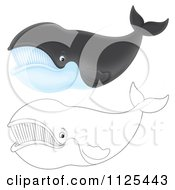 Cartoon Of Outlined And Colored Happy Right Whales Royalty Free Clipart