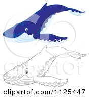 Cartoon Of Outlined And Blue Happy Cute Humpback Whales Royalty Free Clipart