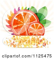 Clipart Of Blood Orange Slices Rays And Copyspace On White Royalty Free Vector Illustration by merlinul