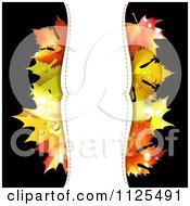 Clipart Of A Background With Autumn Maple Leaves Dew And Vertical Copyspace On Black Royalty Free Vector Illustration by merlinul