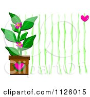 Potted Plant And Vines With A Heart
